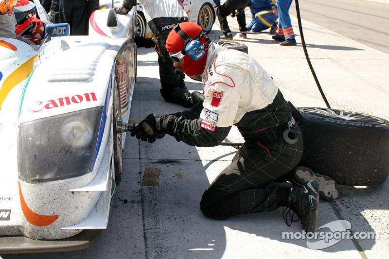 Arrêt au stand pour la #38 Champion Racing Audi R8 de JJ Lehto et Johnny Herbert