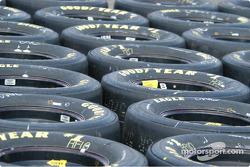 Tire field