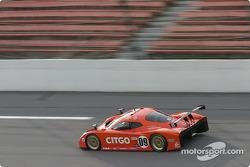 #09 Spirit of Daytona Racing Chevrolet Crawford: Doug Goad, Stephane Gregoire, Robby Gordon, Milka Duno