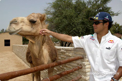 Felipe Massa visits the Al-Areen wild life park in Sakhir
