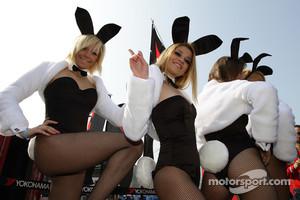 Playboy bunnies in the paddock
