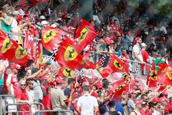 Ferrari fans and flags