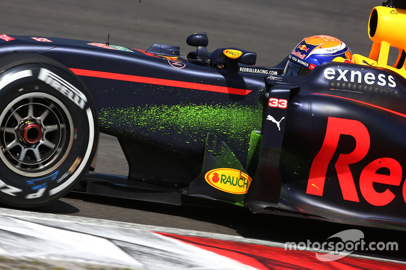 Max Verstappen, Red Bull Racing RB12 with flow-vis paint