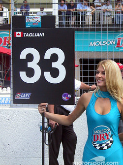 Tag's grid girl