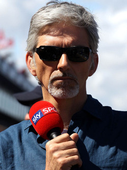 Damon Hill, SKY TV