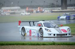 #9 Action Express Racing Corvette DP: Darren Law, Joao Barbosa