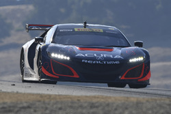 #93 RealTime Racing Acura NSX GT3: Peter Kox, Mark Wilkins, Jules Gounon