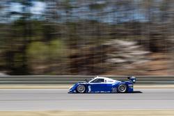 Michael Shank Racing Ford Riley: John Pew, Oswaldo Negri