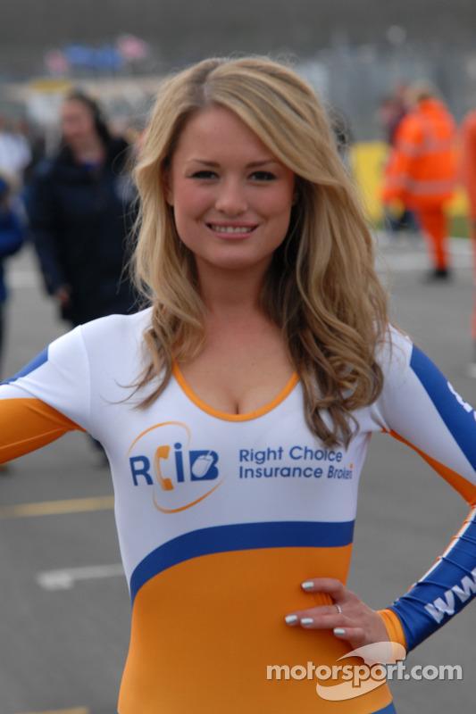 RCIB Insurance grid girl