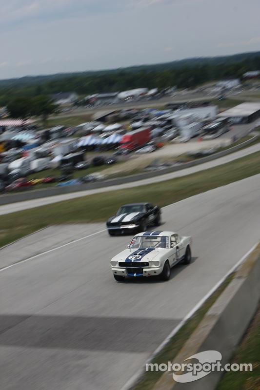 #79 1965 Shelby GT350: Steve Hughes