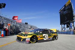 Ryan Newman, Richard Childress Racing, Bass Pro Shops / Cabela's Chevrolet Camaro