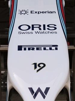 Williams FW36 musetto