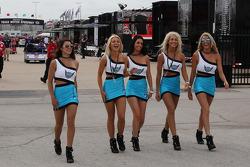 The lovely paddock girls