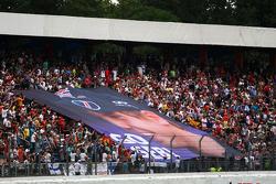Sebastian Vettel pankartı, Red Bull Racing