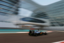Stoffel Vandoorne, McLaren MP4-29H Piloto de testes e reserva