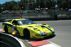 #5 Pacific Coast Motorsports Corvette C5-R: Alex Figge, Ryan Dalziel
