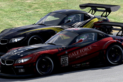 #255 Gale Force Sim Racing, BMW Z4 GT3