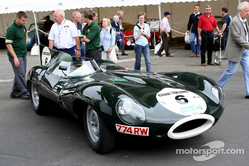 Grille 3 #6 Jaguar  D type 1955