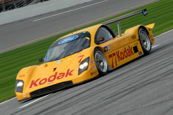 #77 Feeds The Need/ Doran Racing Ford Doran: Memo Gidley, Fabrizio Gollin, Michel Jourdain, Oriol Servia