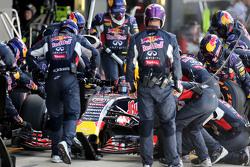 Daniil Kvyat, Red Bull Racing during pitstop