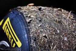 Шины Pirelli для Даниэля Риккардо, Red Bull Racing покрытые травой и гравием