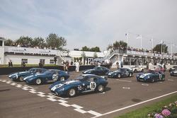 All six Shelby Daytona Coupes ever made