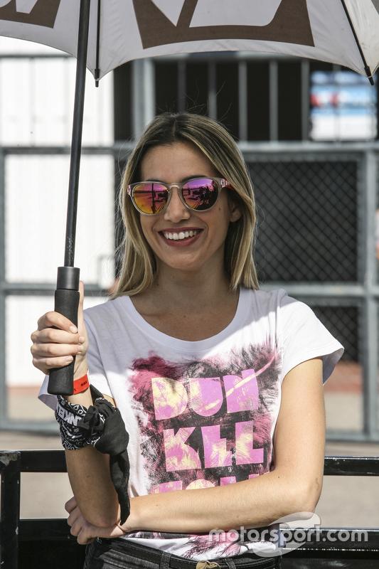 Паддок дівчата Аргентини Dunkel Volk