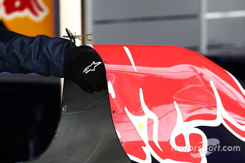 Eine Gottesanbeterin in der Red Bull Racing Garage