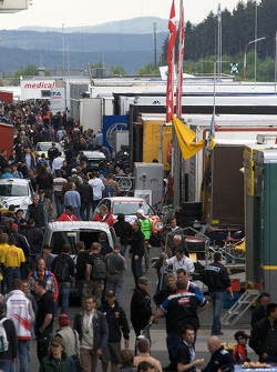 A busy paddock