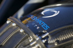 #77 Doran Racing Ford Dallara engine detail