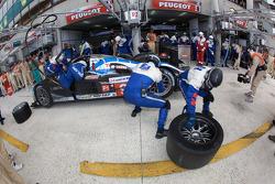 Pit stop for #9 Team Peugeot Total Peugeot 908: Alexander Wurz, David Brabham, Marc Gene