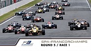 13th race of the 2015 season / 1st race at Spa