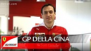 GP della CINA - Riccardo Adami