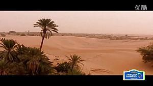 2016摩洛哥梅尔祖卡拉力赛 -新达喀尔时代