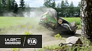 Rally de Finlandia: choque