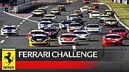 Ferrari Challenge APAC, Fuji 2016 - 2. Yarış özeti