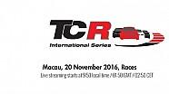 TCR Macau 2016 - 21. & 22. Ayak Yarışları