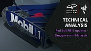 Modifications aux Red Bull RB13 à Singapour et en Malaisie
