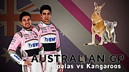 Kangaroos or Koalas? Sergio Perez and Esteban Ocon talk Australia