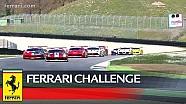 Ferrari Challenge Europe - Mugello 2018, Trofeo Pirelli race 1